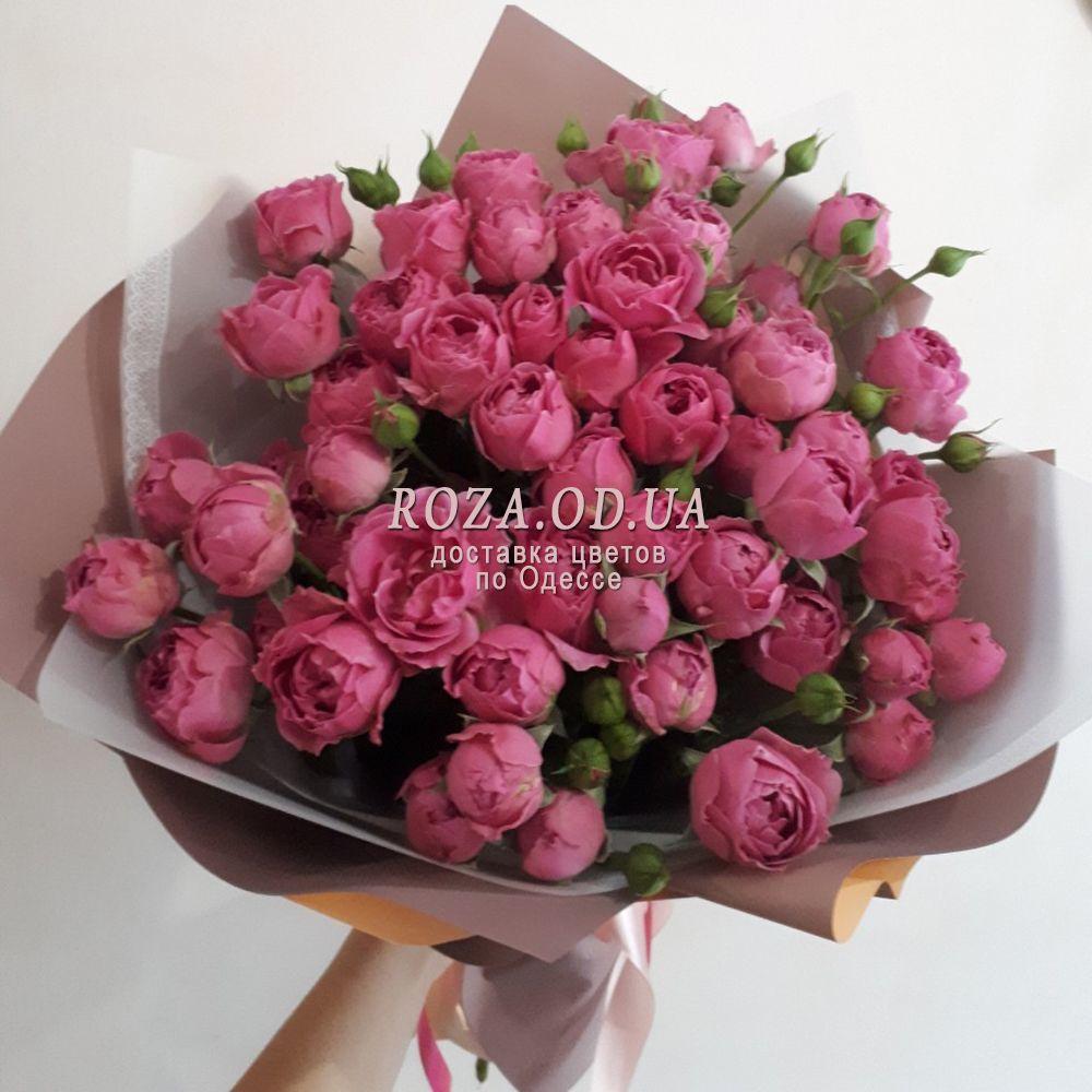 15 kustovyx roz od 298 2