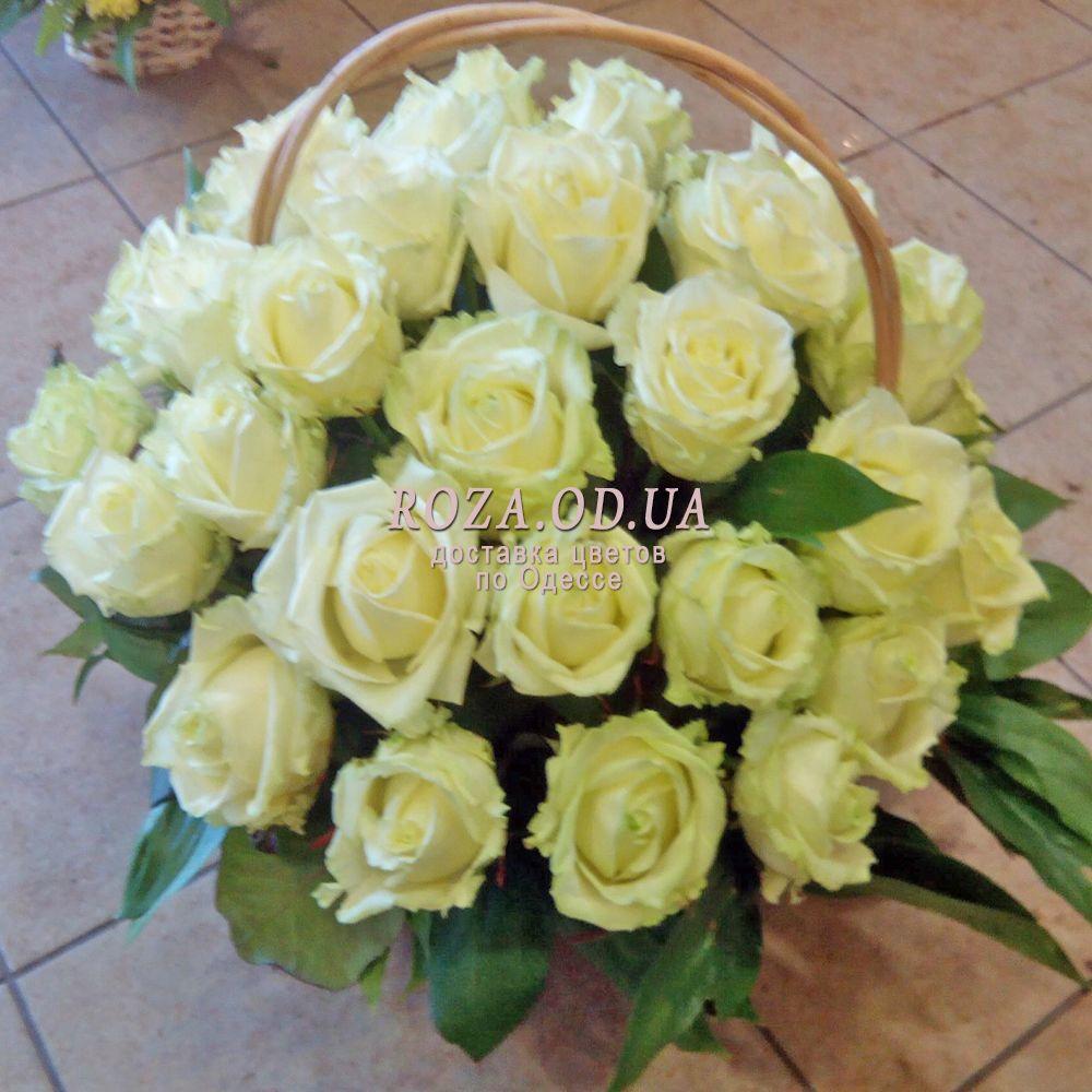 korzina iz 29 belyx roz od 861 1