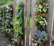 Originelle Gartendeko Schön Overflowing Blossoms In Fence Hanging Planters