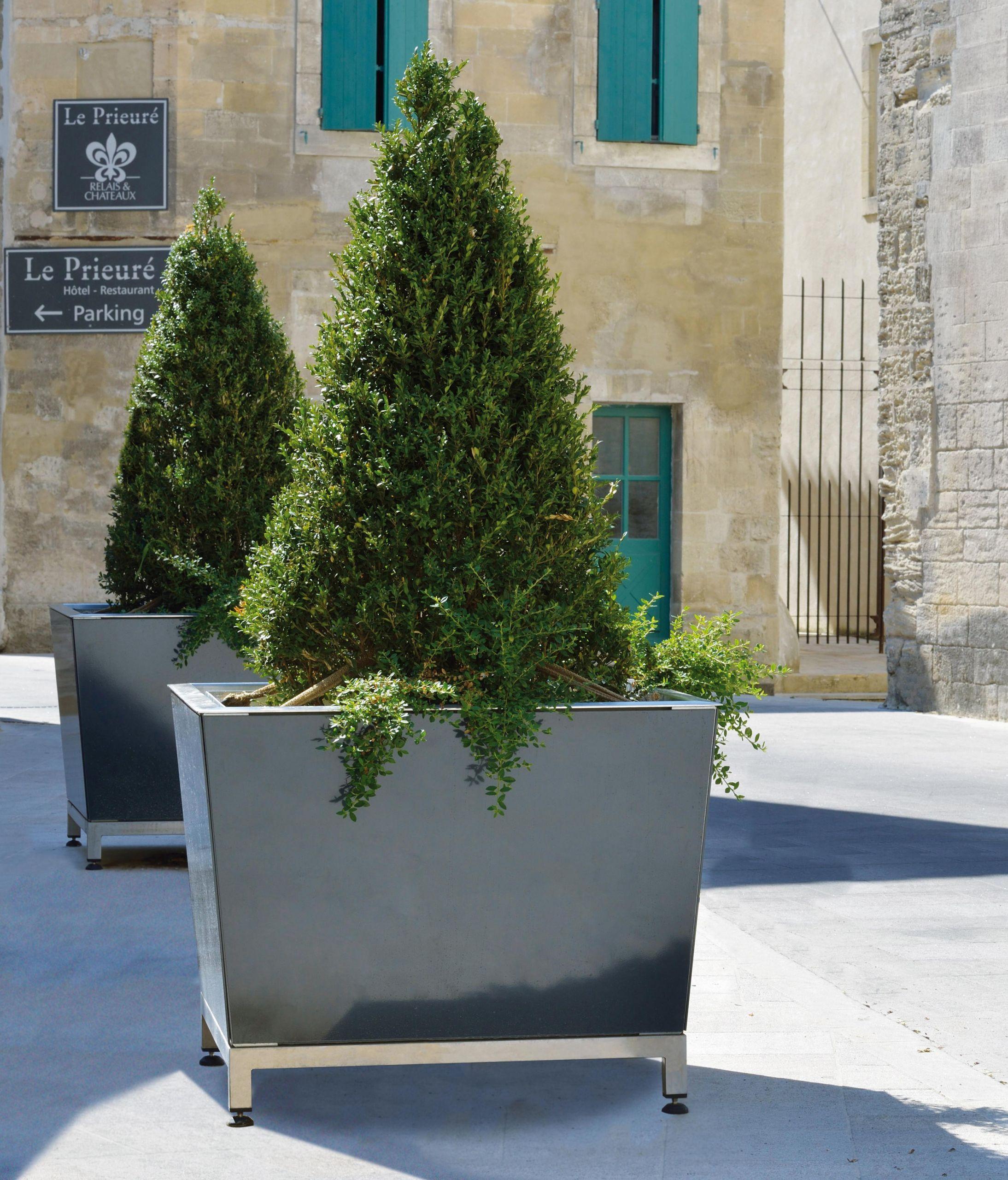 Pflanzen Deko Ideen Inspirierend Blumentöpfe Terrasse