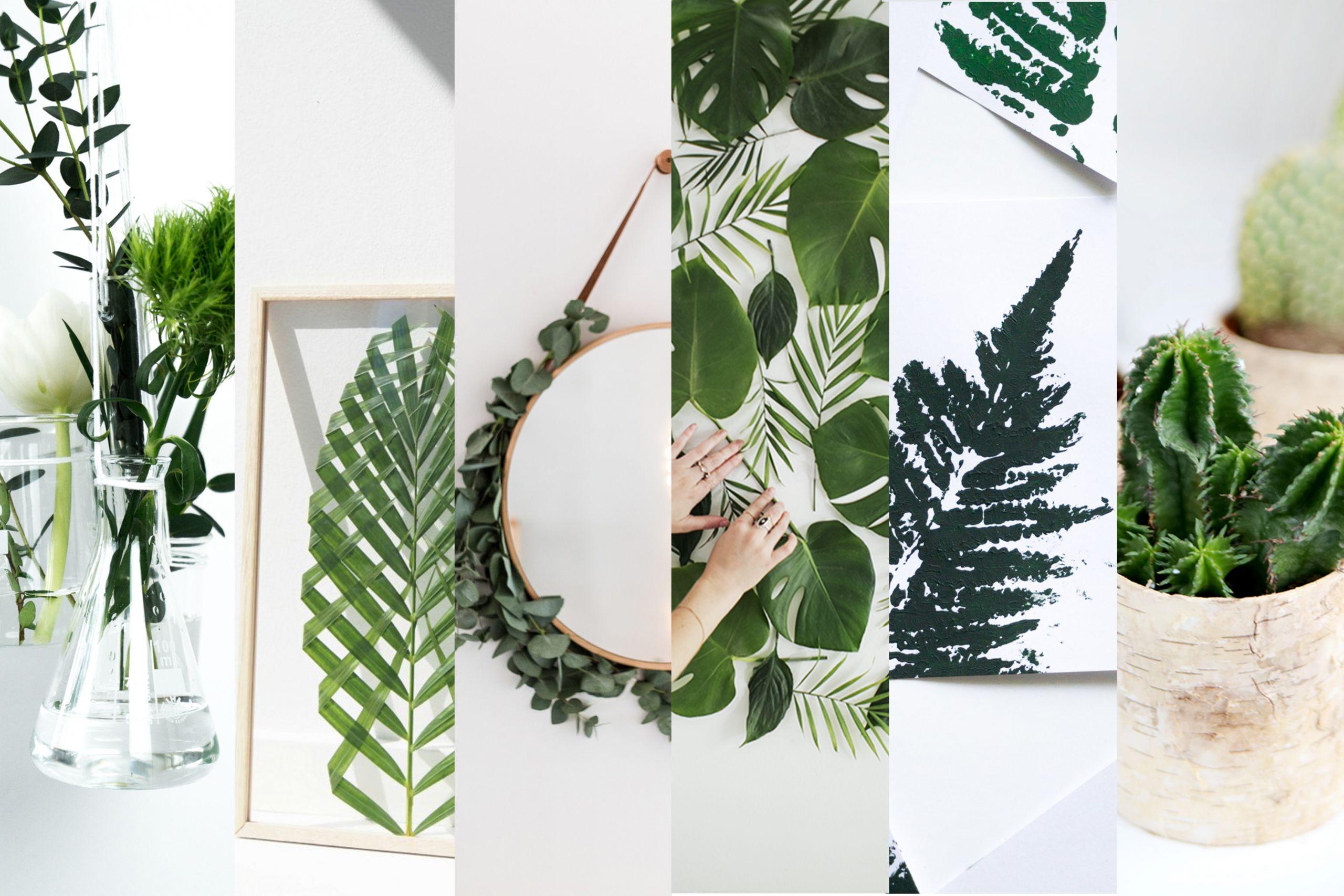 grune deko ideen mit 6 kreative ideen fur pflanzen deko schereleimpapier diy 85 und diy ideen mit pflanzen deko mit grune deko ideen