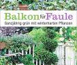 Pflanzen Garten Inspirierend 37 Das Beste Von Pflanzen Im Garten Luxus