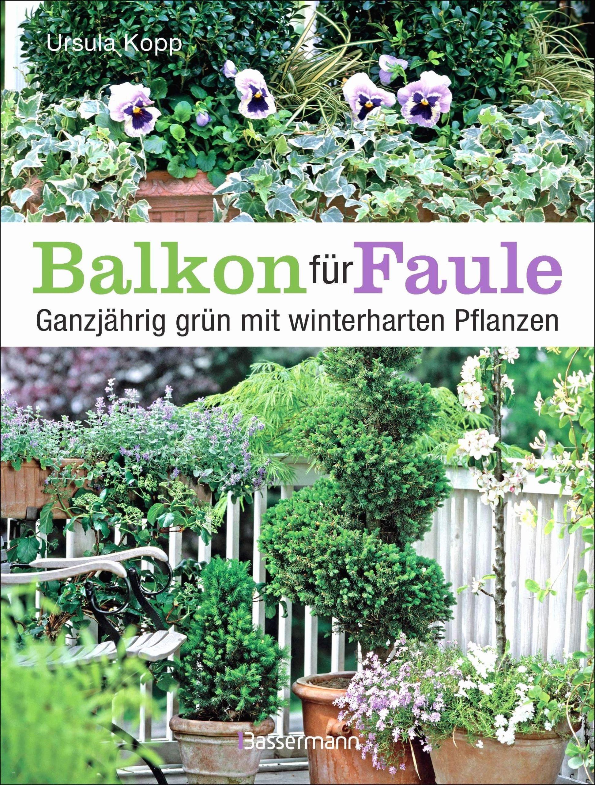 pflanzen im garten schon 51 garden design alexstand of pflanzen im garten scaled