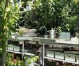 Pflegeleichte Gartengestaltung Schön Garten Landschaftsbau Gehalt