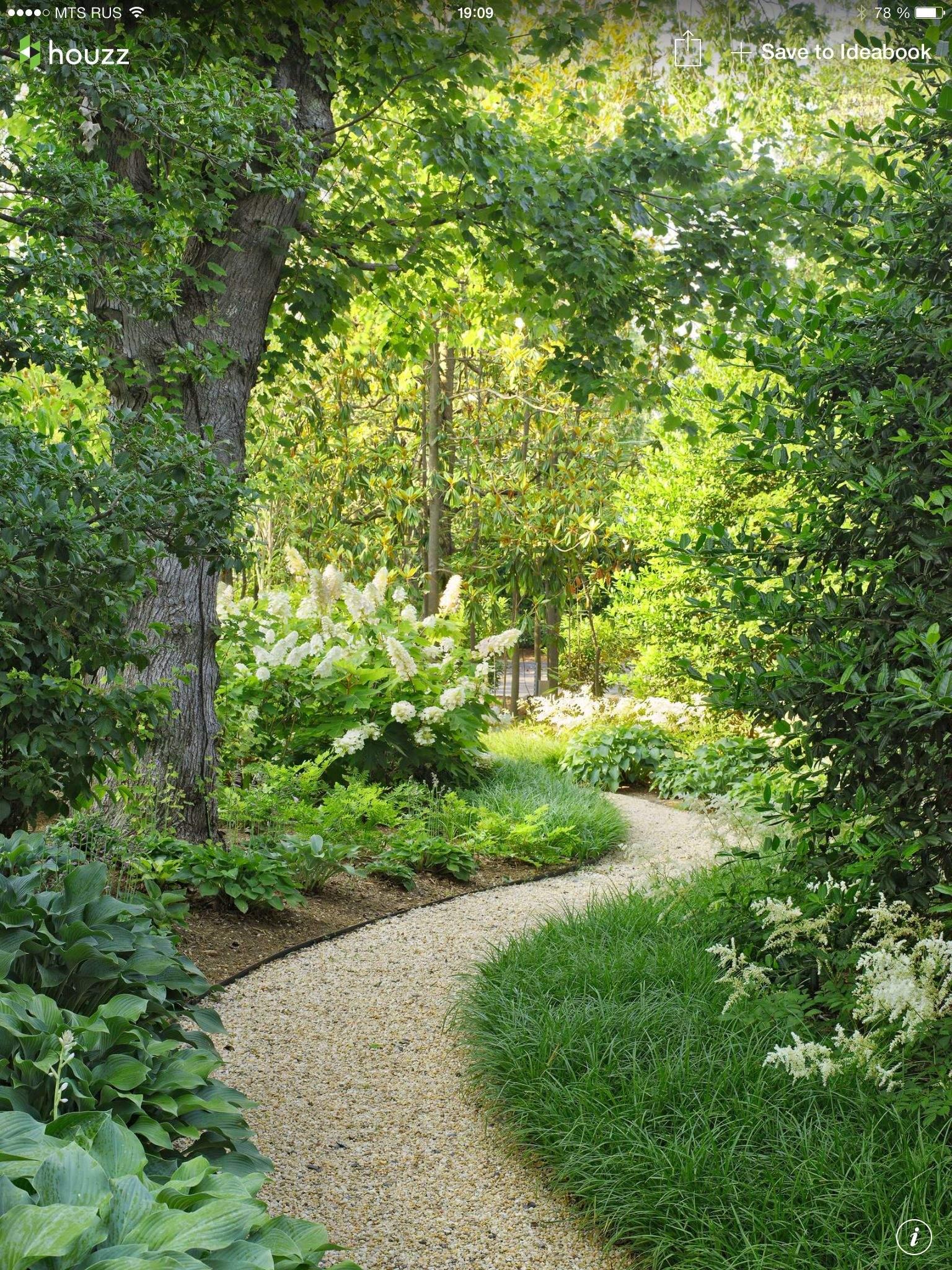 wege im garten anlegen elegant pin von renate schenkeli auf pflanzen of wege im garten anlegen
