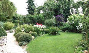 37 Neu Pflegeleichter Garten