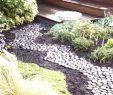 Pflegeleichter Garten Schön Garden Walkways Unique 20 Best Hangbefestigung Steine Ideas