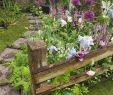 Pinterest Gartenideen Schön Best Diy Cottage Garden Ideas From Pinterest 20