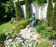 Quellsteine Im Garten Frisch Quellstein Als Schönes Dekoratives Designelement Vor Einem
