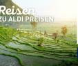 Rankgitter Aldi Best Of Line Services Von Aldi nord – Praktische Dienste Für Kunden