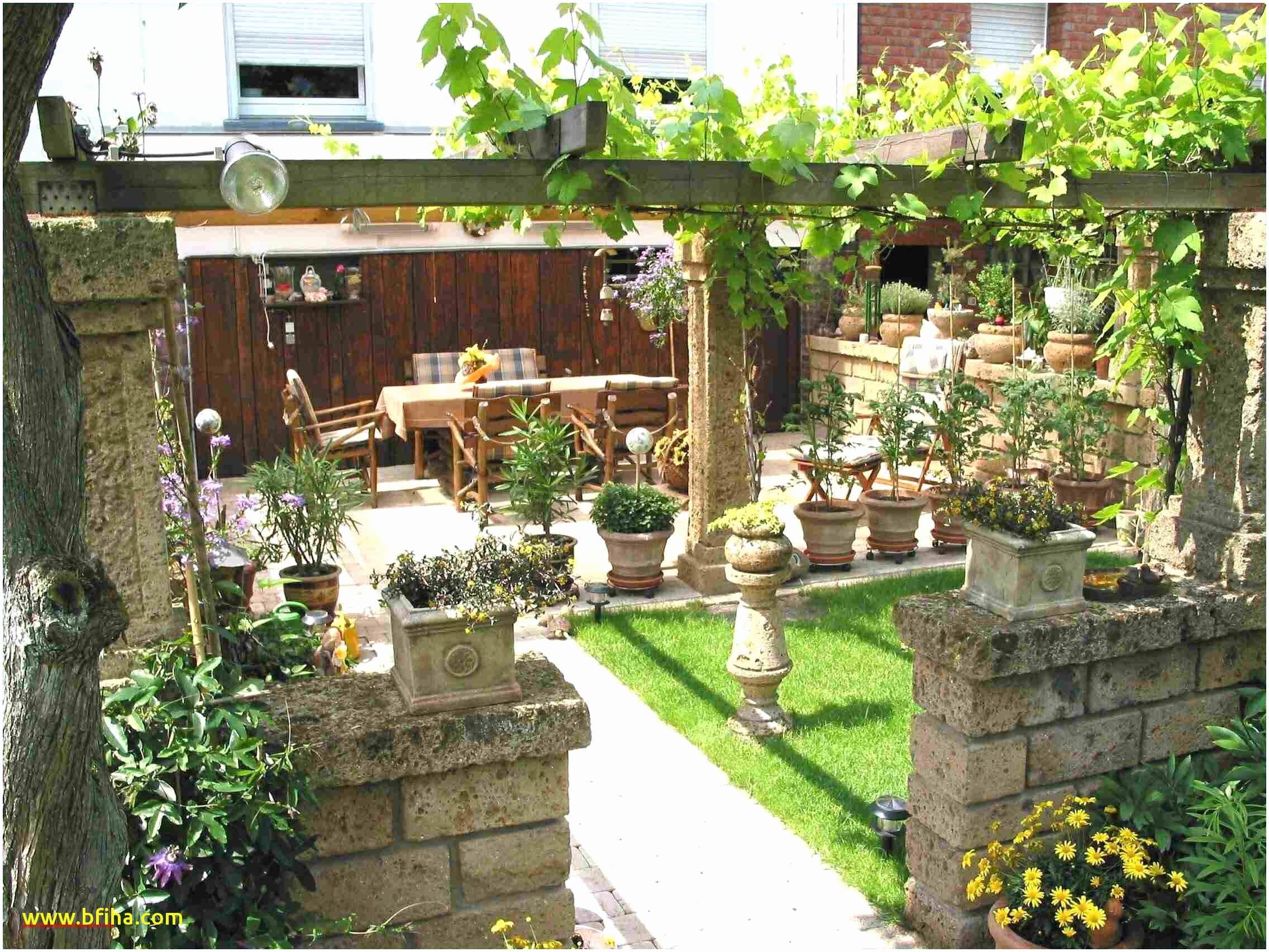 garden path ideas luxury sichtschutz garten of garden path ideas