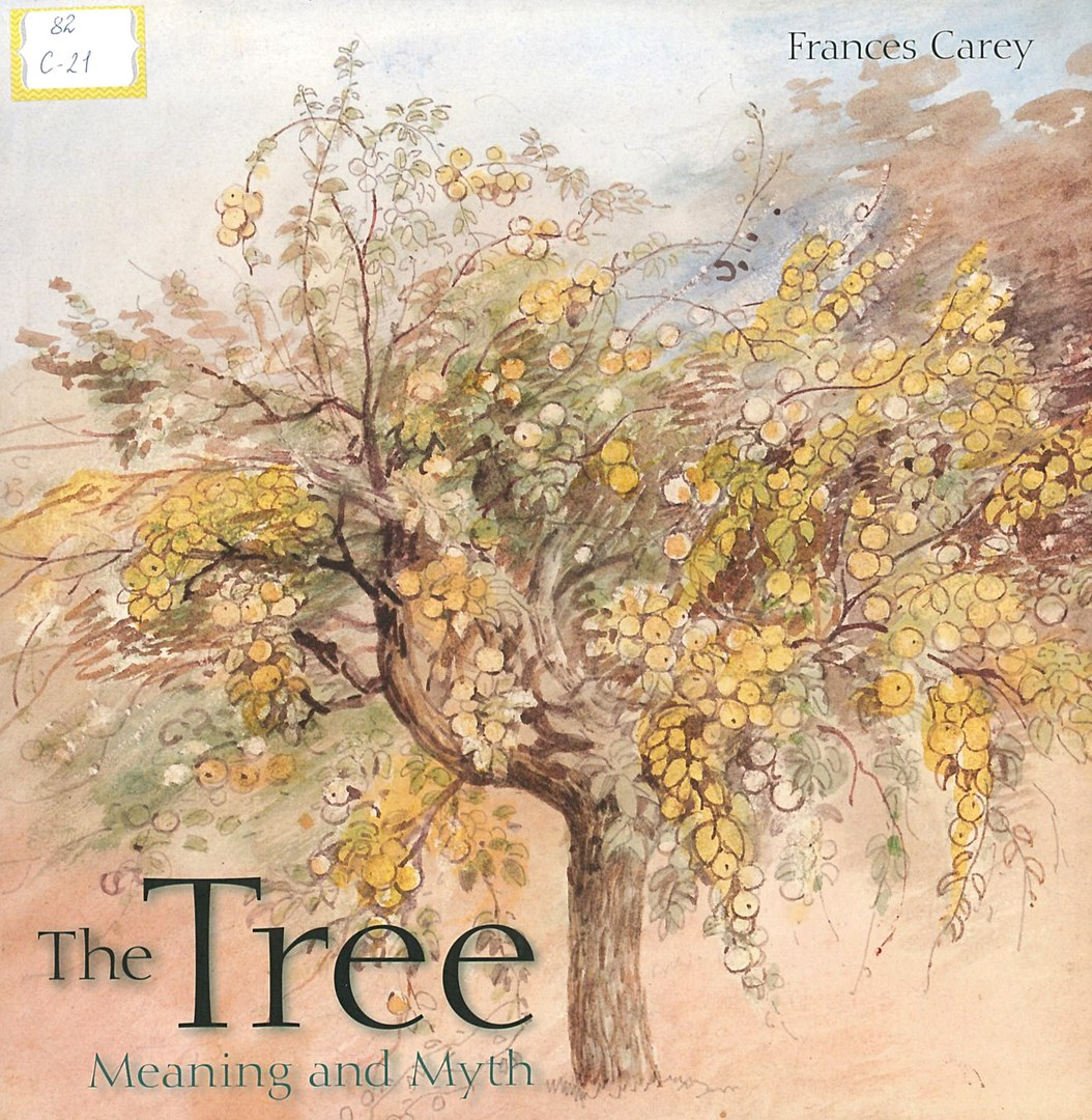 carey the tree