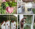 Rost Deko österreich Genial Ideas and Inspirations Landhausgarten Countrygarden