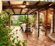 Rost Garten Neu Villateresa ИтаРия Бари Сардо Booking