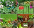 Rostartikel Für Den Garten Elegant Ausgefallene Ideen Für Den Garten Sağlıklı Yemek Tarifleri