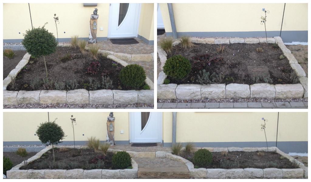 neue stauden fur den vorgarten
