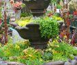 Rostelemente Für Garten Einzigartig Ausgefallene Ideen Für Den Garten