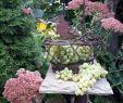 Rostfiguren Garten Schön Herbstdeko Je Wilder Je Bunter Je Vielfältiger Desto
