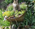Rostige Gartendeko Schön 598 Best Ƹ̵̡Ӝ̵̨̄Ʒgarden Ƹ̵̡Ӝ̵̨̄Ʒ Images