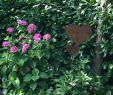 Rostige Gartendeko Selbstgemacht Inspirierend ☀️schönes Wochenende☀️ Mygardentoday Garden