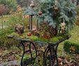 Rostige Gartendeko Selbstgemacht Luxus Die 145 Besten Bilder Von Garten In 2019