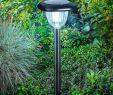 Rustikale Gartendeko Einzigartig Moderne solarleuchte Classic Light Von Esotec Schwarz