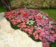 Schöne Gärten Gestalten Best Of 30 Gartengestaltung Ideen – Der Traumgarten Zu Hause
