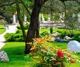 Schöne Gärten Gestalten Best Of Eyßer Schöne Gärten