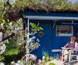 Schöne Gärten Gestalten Einzigartig Schöne Sitzplätze Im Garten Gestalten Haus Und Garten