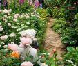 Schlauch Garten Gestalten Best Of 31 Reizend Cottage Garten Anlegen Luxus