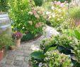 Schmaler Garten Gestalten Einzigartig Gefällt 983 Mal 46 Kommentare S A B R I N A so Leben