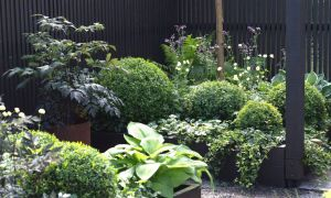22 Genial Schmaler Garten Gestalten