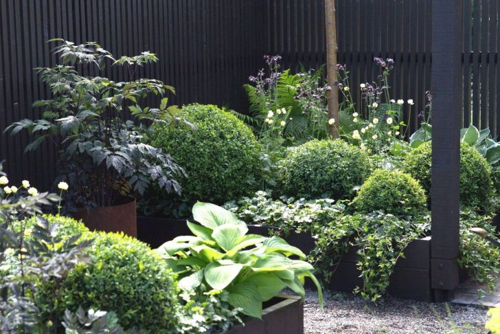 Schmaler Garten Gestalten Inspirierend 39 Reizend Schmaler Garten Schön