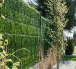 """Schmaler Garten Gestalten Schön Zaunblende Hellgrün """"greenfences"""" Balkonblende Für 180cm"""