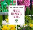 Schöne Gartendeko Selbstgemacht Luxus 95 Best Spring Blooms Images