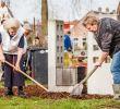 Schöner Garten Bilder Neu Prinses Beatrix Klust In Speeltuin Kloosterplantsoen