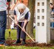 Schöner Garten Shop Frisch Prinses Beatrix Klust In Speeltuin Kloosterplantsoen