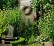 Schrebergarten Gestaltungsideen Einzigartig Die 3621 Besten Bilder Von Garten In 2020