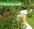Schrebergarten Gestaltungsideen Luxus Die 55 Besten Bilder Von Gartenwege & Gartentreppen In 2020