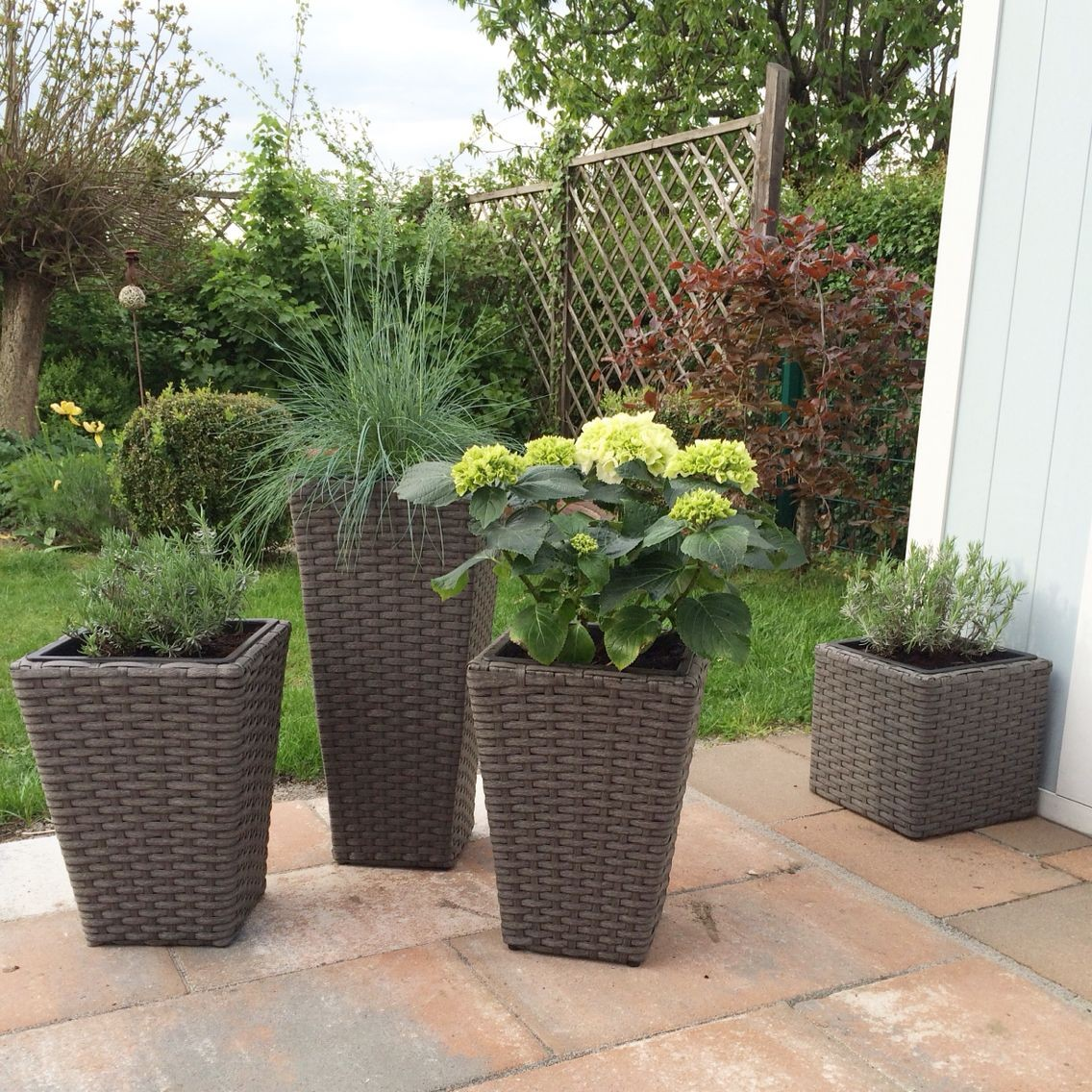 rattan kubel mit bepflanzung plant vase blumentopfe terrasse of blumentopfe terrasse