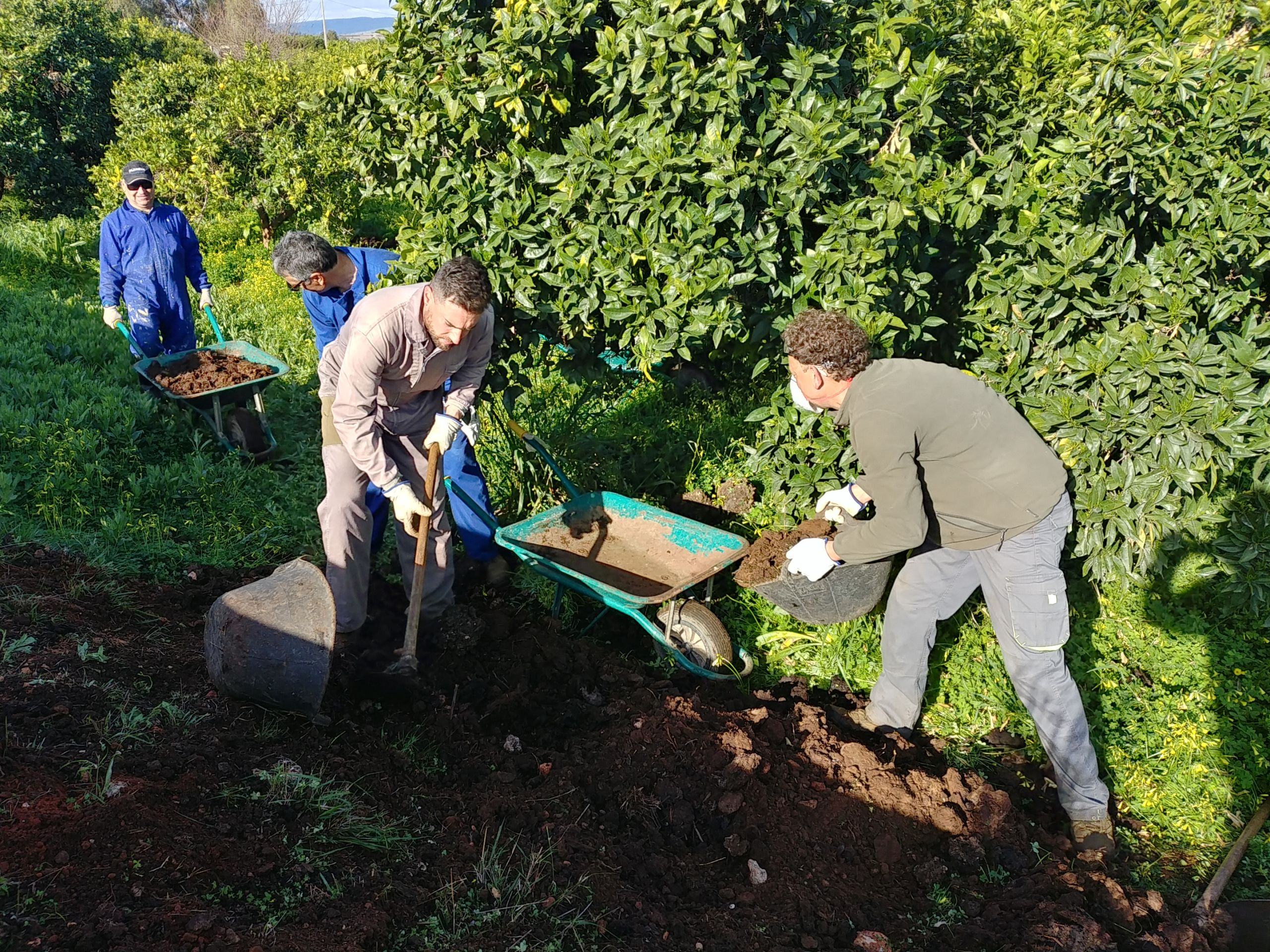 kompostdungung wagen fullen