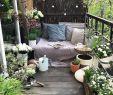 Sehr Kleiner Garten Ideen Neu 37 Einzigartig Sehr Kleiner Garten Ideen Frisch
