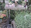 Shabby Gartendeko Genial Pin Von Bozena Dryja Auf Kleine Landhäuser Und Garten