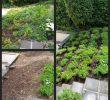 Shop Mein Schoener Garten De Heft Angebote Inspirierend Garten Am Hang Ideen Genial Terrasse Am Hang — Temobardz