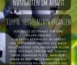 Sichtschutz Beet Einzigartig Nutzgarten Die Besten Gartentipps Im August