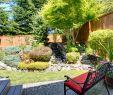 Sichtschutz Für Kleine Gärten Schön Gartengestaltung Kleine Garten