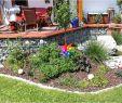 Sichtschutz Garten Ideen Günstig Einzigartig 25 Einzigartig Garten Ideen Günstig Genial