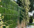 """Sichtschutz Kleiner Garten Frisch Zaunblende Hellgrün """"greenfences"""" Balkonblende Für 180cm"""