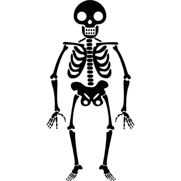halloween skelett
