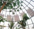 Solar Deko Garten Genial Copyright